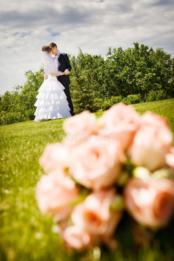 Beijando a noiva fotografia de stock royalty free