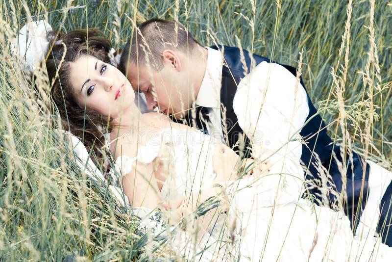 Beijando a noiva e o noivo foto de stock royalty free