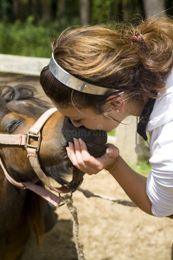 Beijando um cavalo imagens de stock royalty free