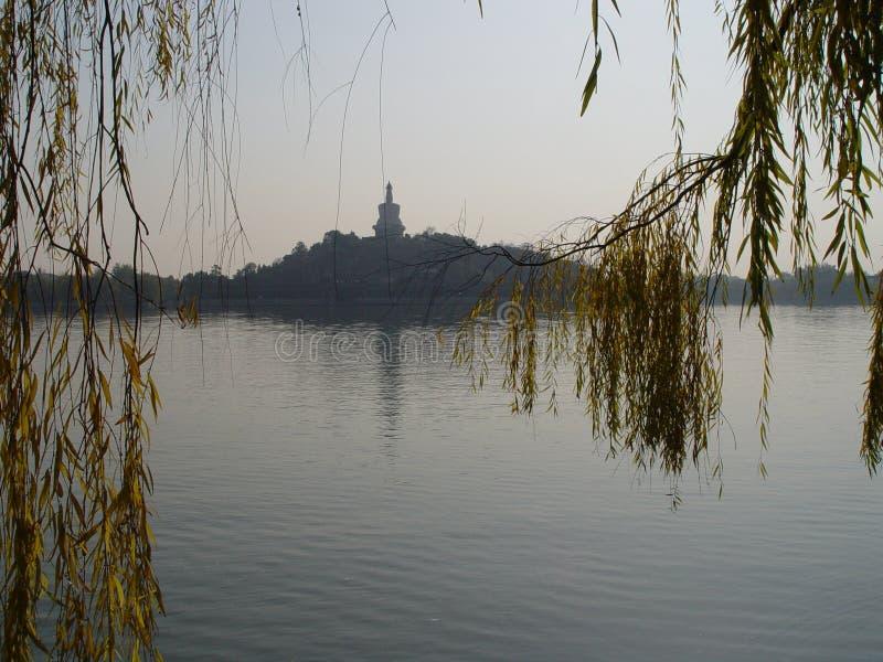 Beijing China - opinião do salgueiro do parque de Beihai fotografia de stock
