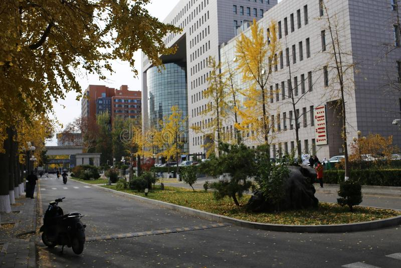 Beijing Language and Culture University. Image taken at Beijing Language and Culture University in 2019 royalty free stock photo