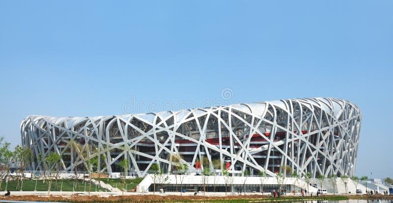 beijing olympic stadion arkivbild