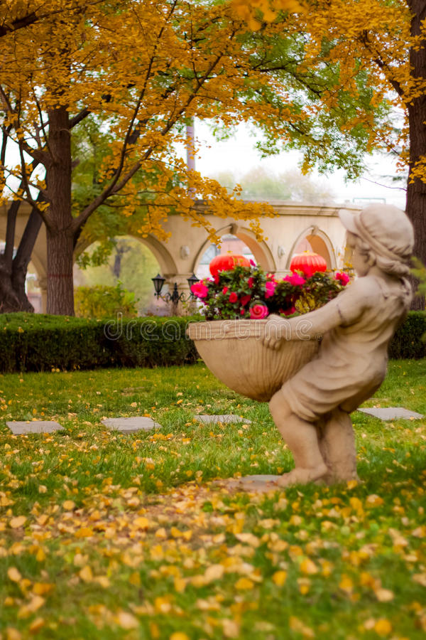 Beijing`s autumn scenery. The sculpture of a child, holding a big bunch of roses, autumn yellow leaves and red roses comparative and intense, particularly good royalty free stock photography