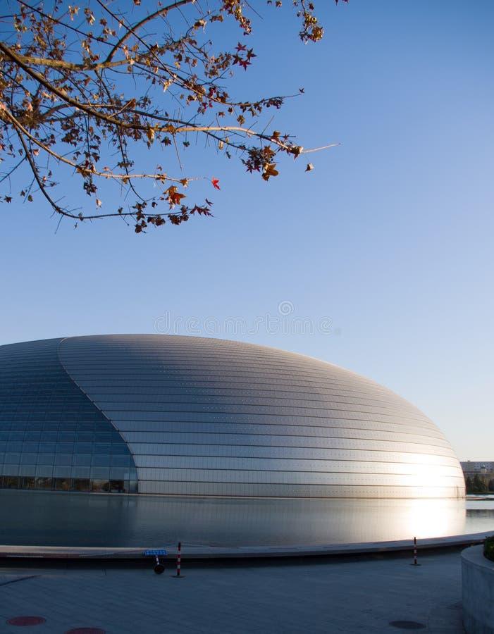 beijing storslagen nationell theatre royaltyfria bilder