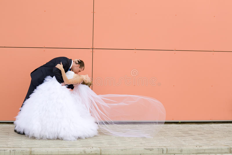 Beijo da noiva e do noivo fotografia de stock royalty free