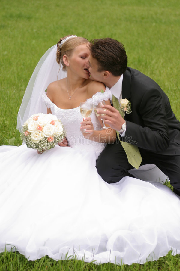 Beijo da noiva e do noivo fotografia de stock
