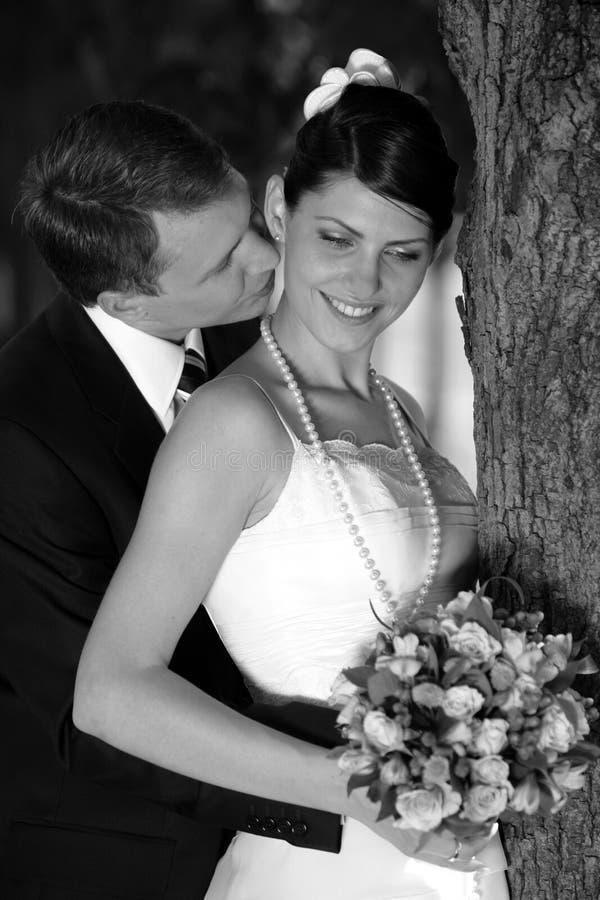 Beijo da noiva e do noivo imagem de stock