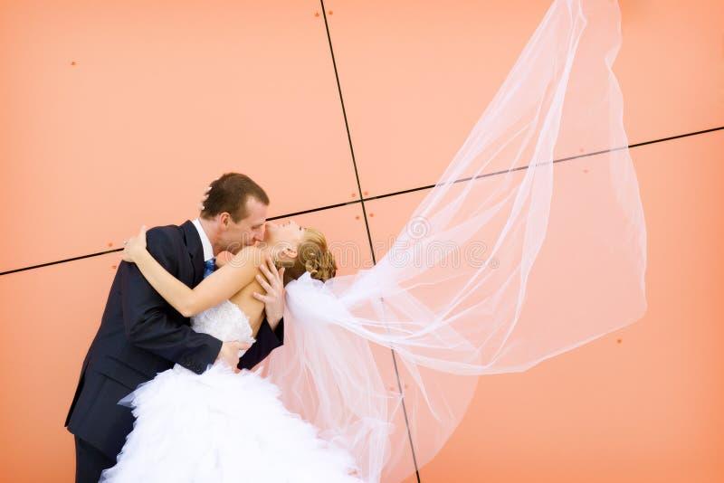 Beijo da noiva e do noivo fotos de stock royalty free