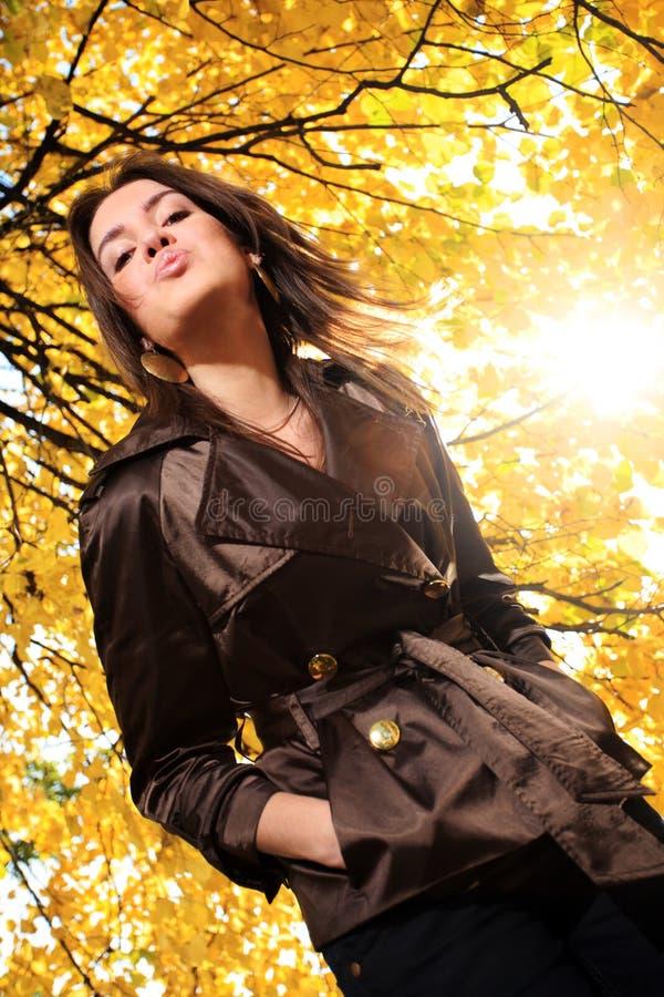 Beijo do outono imagem de stock