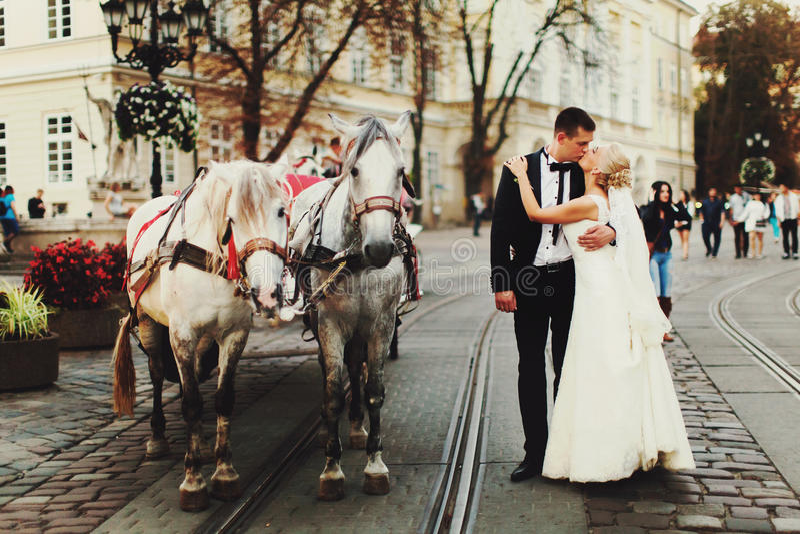 Beijo dos noivos atrás dos cavalos em algum lugar na parte velha de foto de stock royalty free