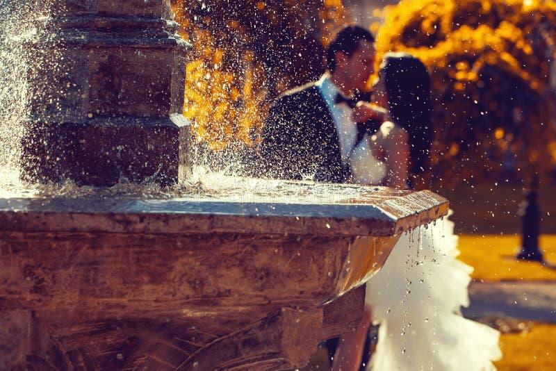 Beijo dos pares do casamento perto da água da fonte foto de stock royalty free