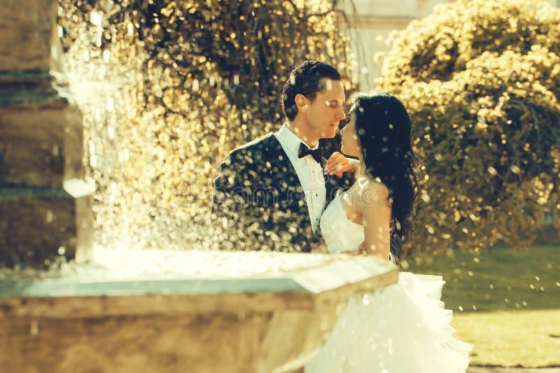 Beijo dos pares do casamento perto da água da fonte fotografia de stock royalty free