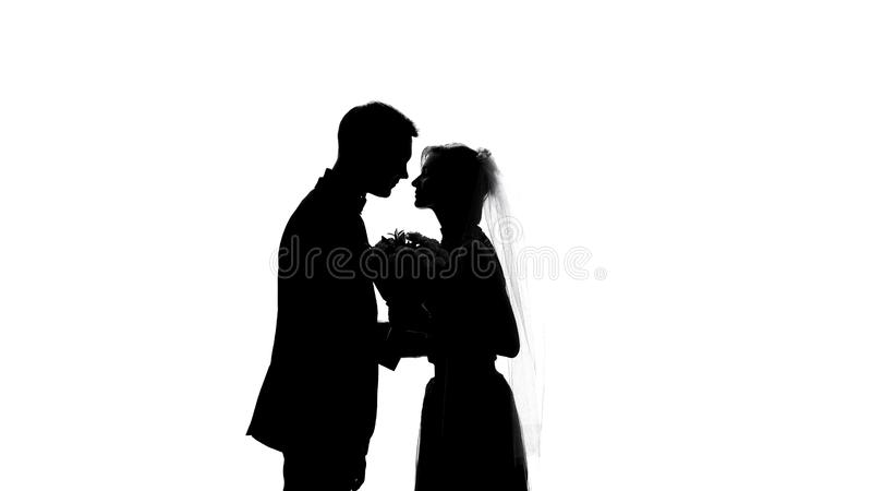 Beijo dos pares do casamento, sentimentos românticos e união, ternura das relações fotos de stock