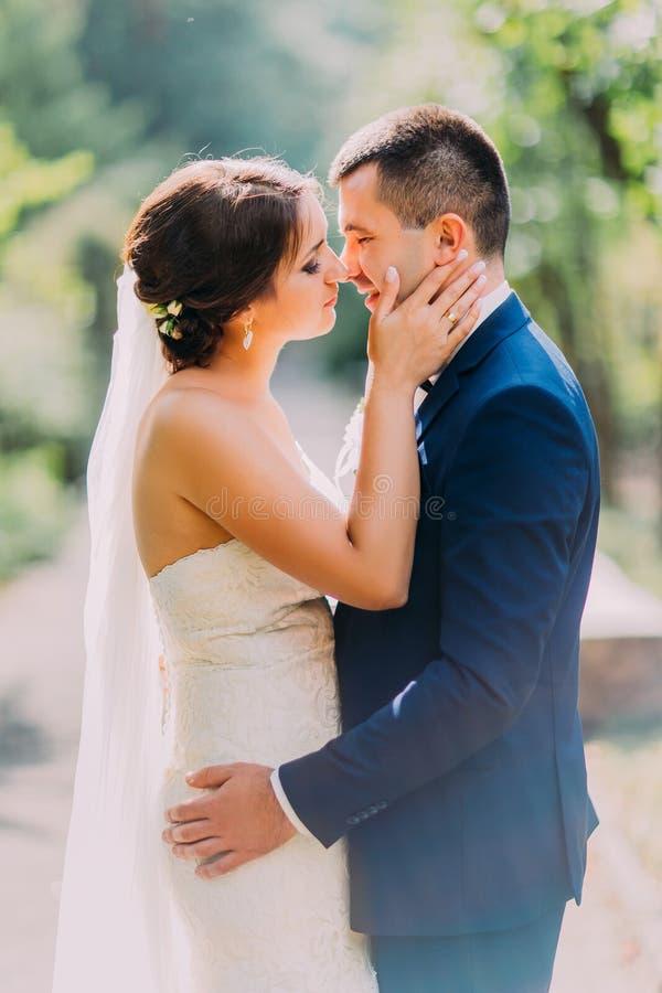 Beijo feliz dos pares do recém-casado exterior no dia ensolarado com a aleia do parque como o fundo fotos de stock royalty free