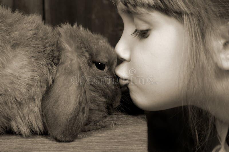 Beijos do coelho imagem de stock