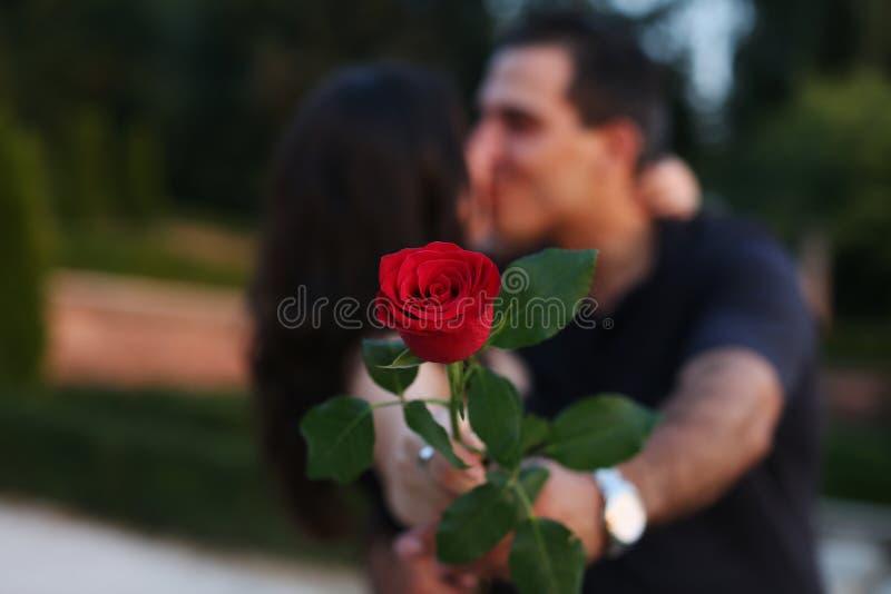 Beijos dos pares imagem de stock royalty free