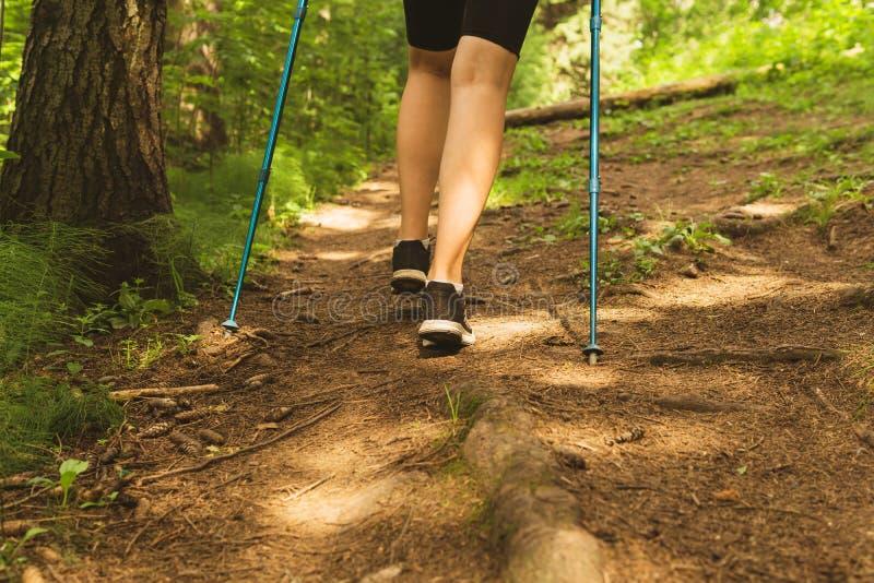 Beine einer Frau, die auf einem Gebirgspfad wandert lizenzfreie stockfotos