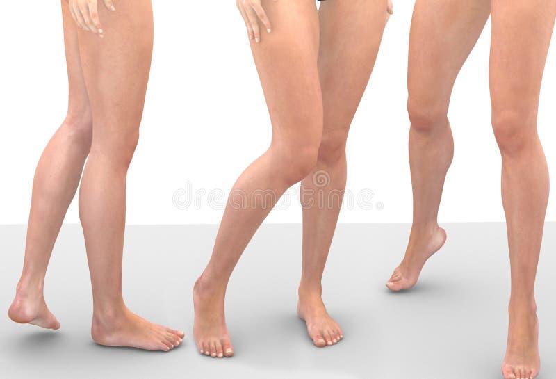 Beine von Frauen stockbild