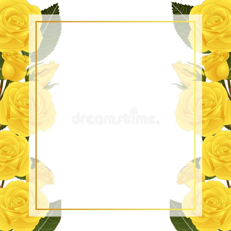 Beira amarela de Rose Flower Frame Banner Card Isolado no fundo branco Ilustração do vetor ilustração royalty free