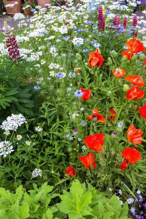 Beira BRITÂNICA do jardim da casa de campo do verão colorido foto de stock royalty free
