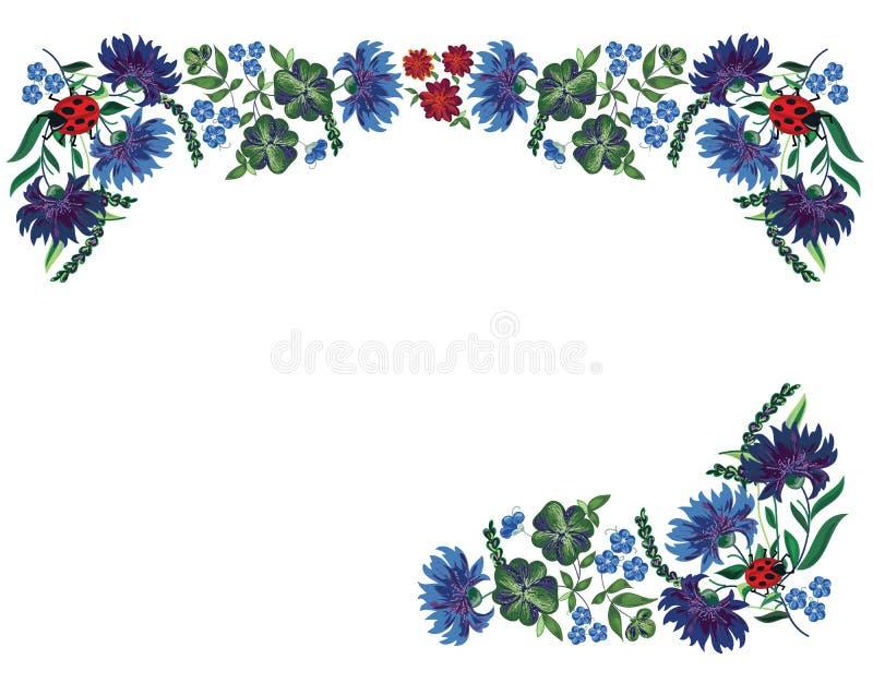 Beira com flores e os joaninhas azuis ilustração do vetor