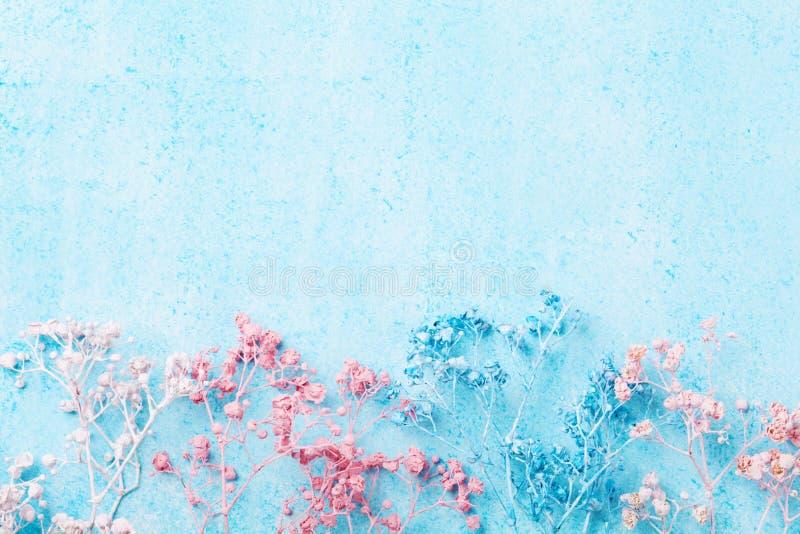 Beira da flor do casamento na opinião superior do fundo pastel azul Teste padrão floral bonito estilo liso da configuração Mulher foto de stock royalty free