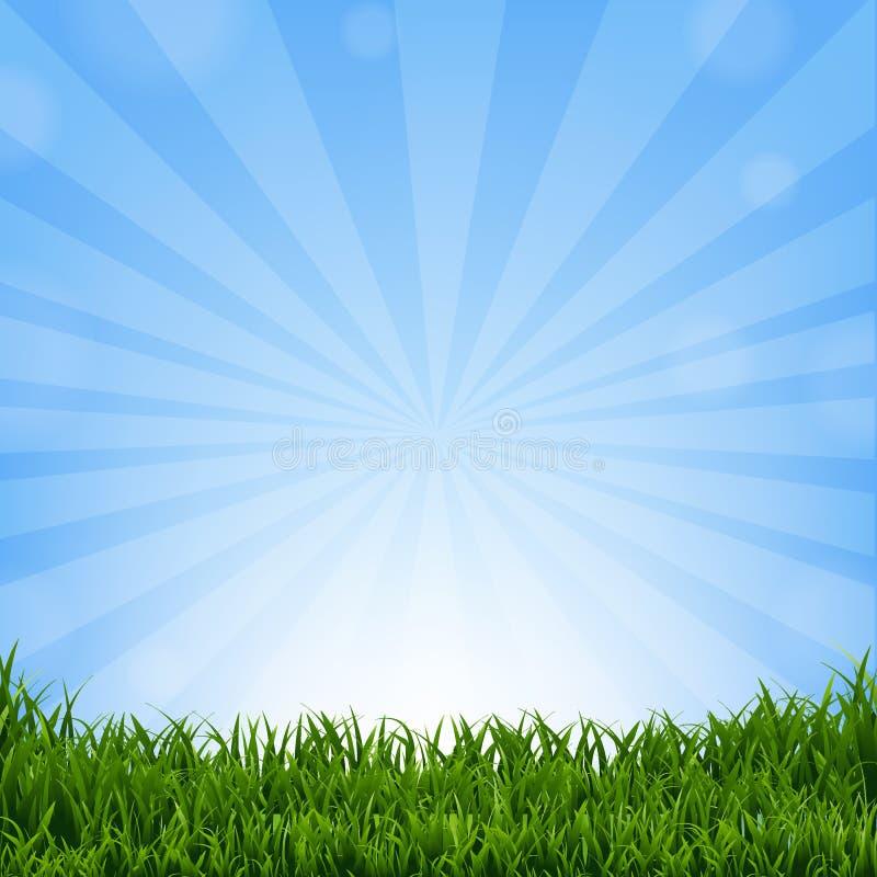 Beira da grama com Sunburst ilustração do vetor