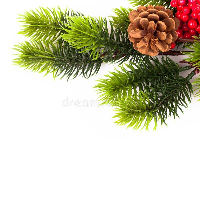 Beira das filiais de árvore do Natal sobre o branco foto de stock royalty free
