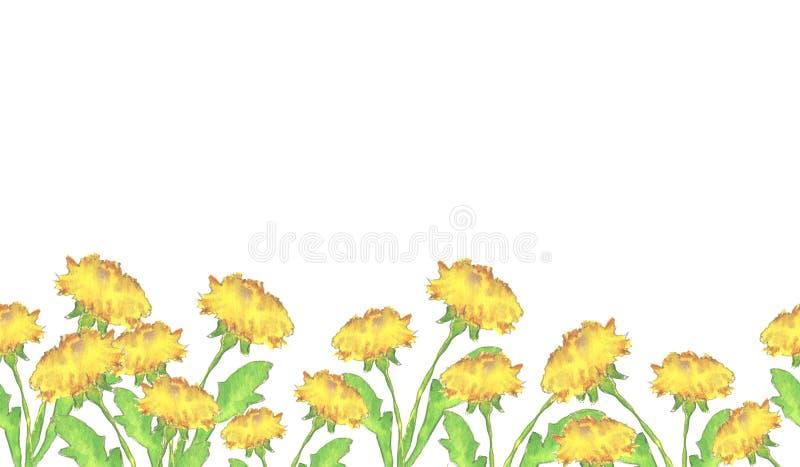 Beira das flores do dente-de-leão ilustração stock