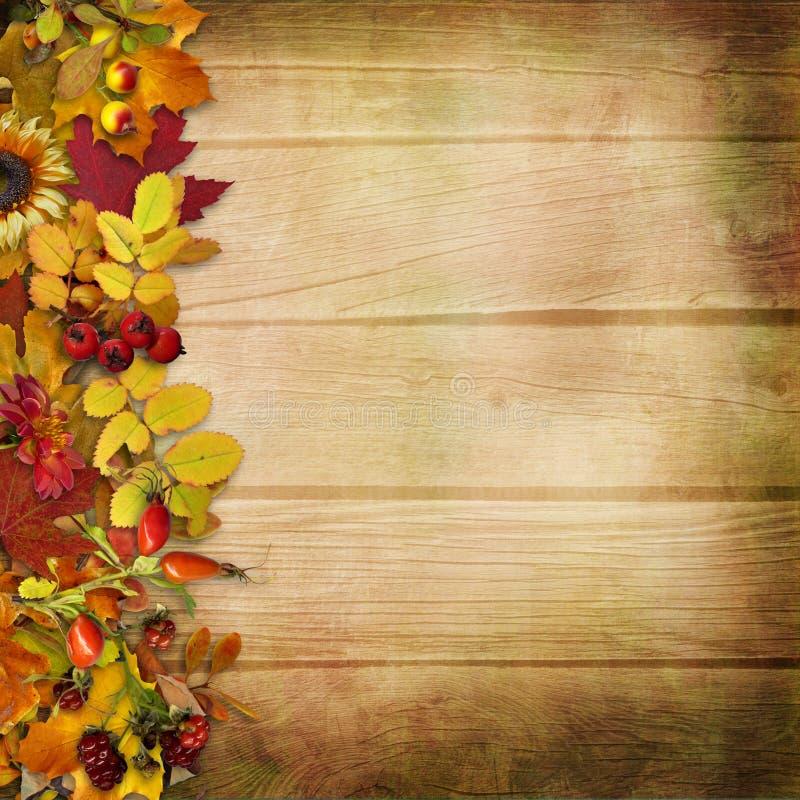 Beira das folhas e das bagas de outono em um fundo de madeira ilustração royalty free
