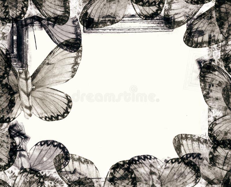 Beira de Grunge ilustração royalty free