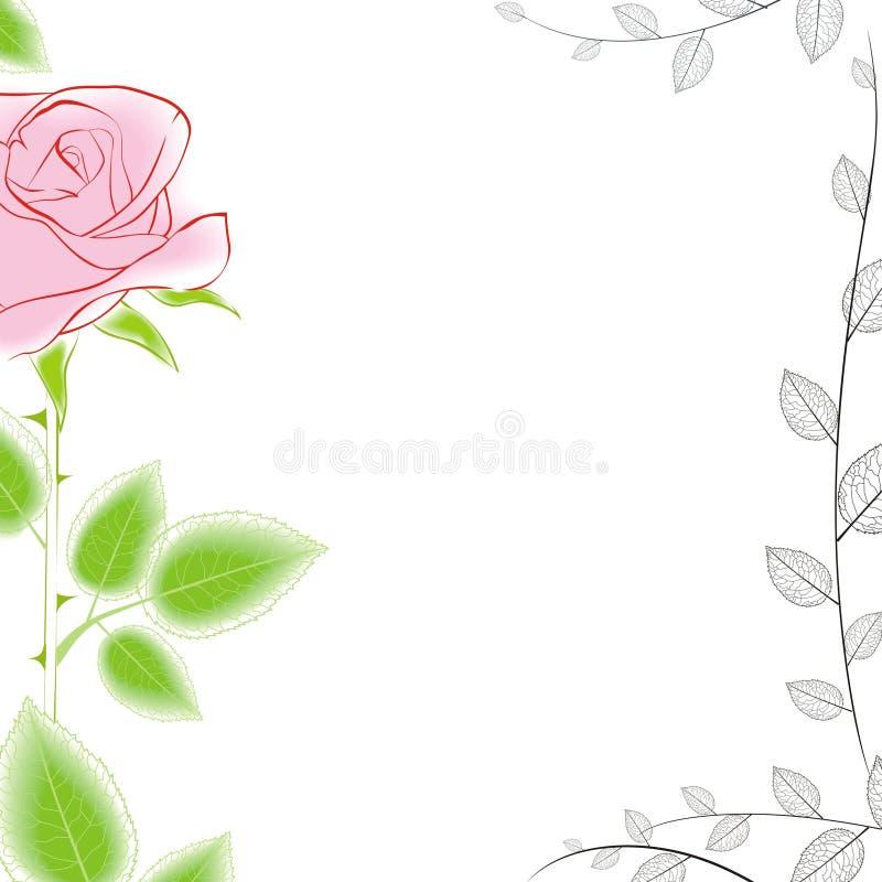 Beira de Rosa ilustração stock