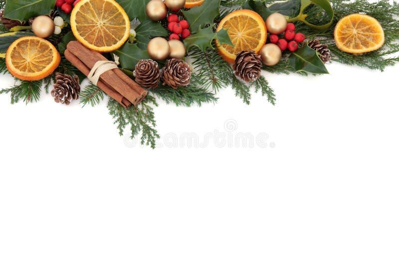 Beira do fruto do Natal imagem de stock