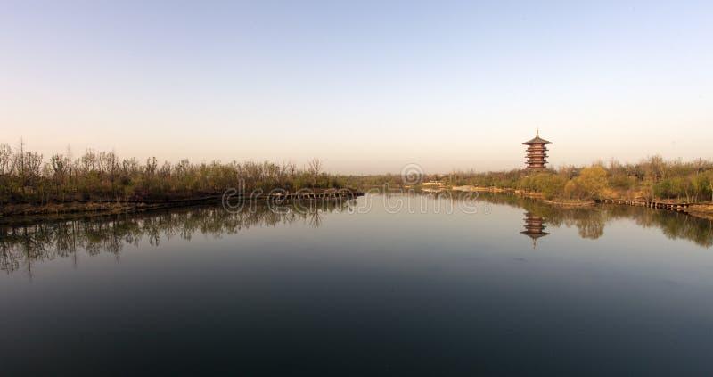 Beira do lago fotografia de stock