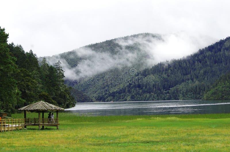 Beira do lago fotos de stock royalty free