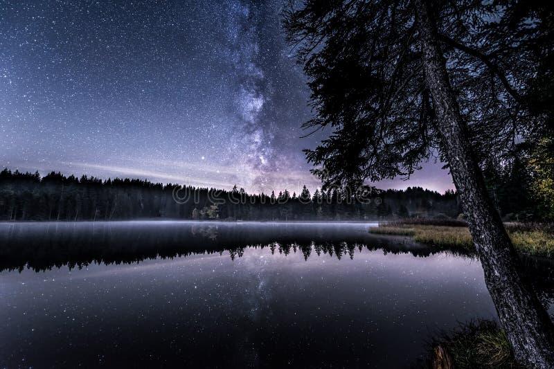 Beira do lago estrelado imagens de stock royalty free