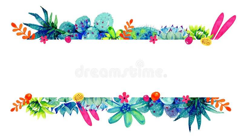 Beira do quadro com flores, cactos e plantas carnudas em superior e em inferior Ilustração tirada mão do esboço da cor da aquarel ilustração royalty free
