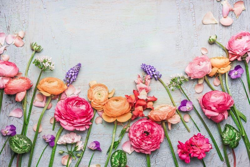 A beira do vário jardim bonito floresce no fundo chique gasto, quadro, vista superior fotos de stock
