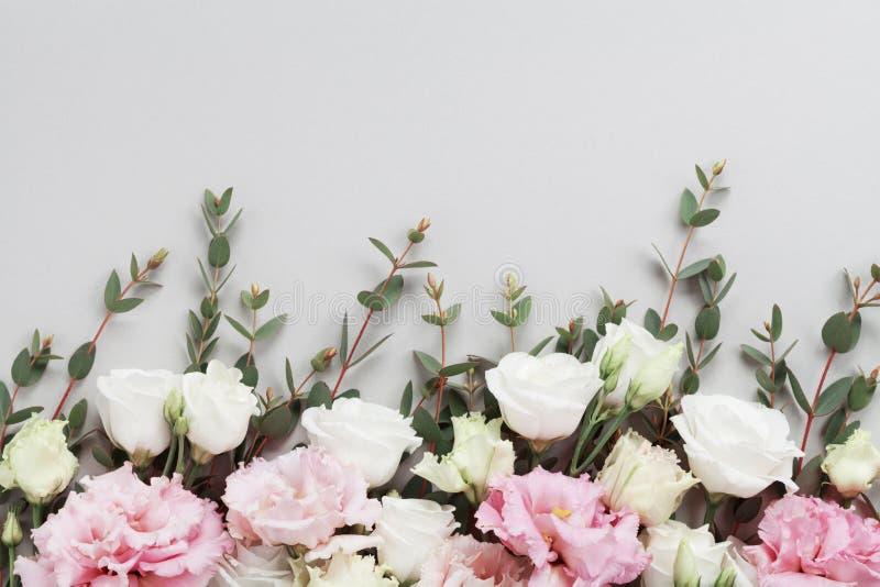 A beira floral bonita de flores pasteis e do eucalipto verde sae na opinião de tampo da mesa cinzenta Composição lisa da configur imagens de stock
