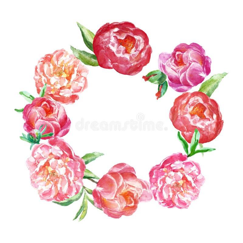 Beira floral da mola da aquarela com rosa e as peônias corais As flores pintados à mão envolvem a ilustração ilustração stock