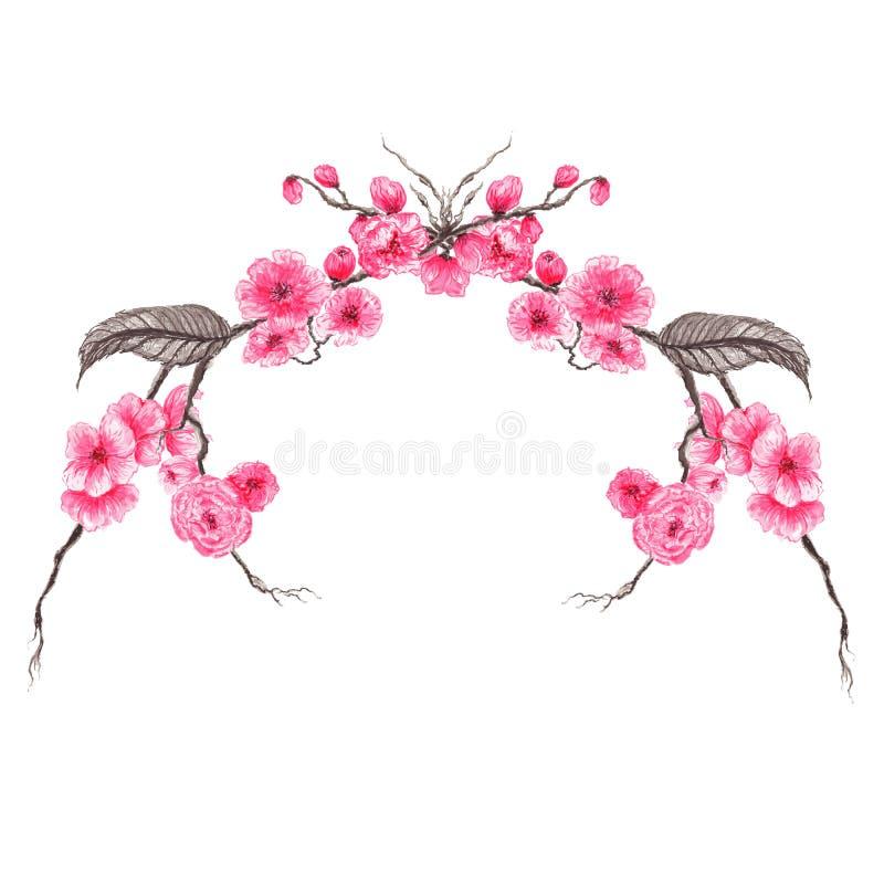 A beira floral do cartão do convite do casamento, projeto de florescência japonês do quadro dos ramalhetes de sakura, ilustração  ilustração royalty free