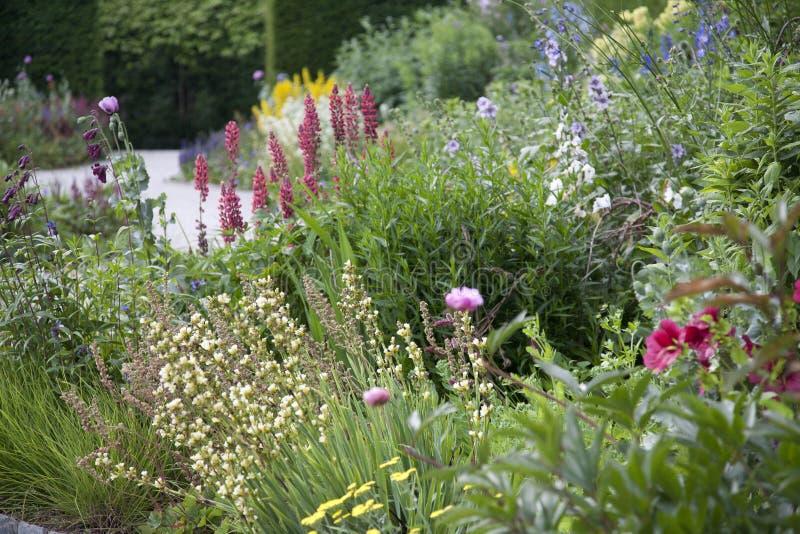 Beira inglesa do jardim com flores do verão imagens de stock royalty free