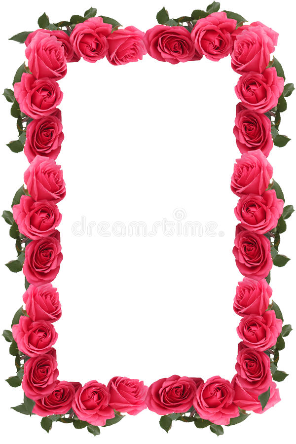 Beira ou frame cor-de-rosa da cor-de-rosa fotos de stock