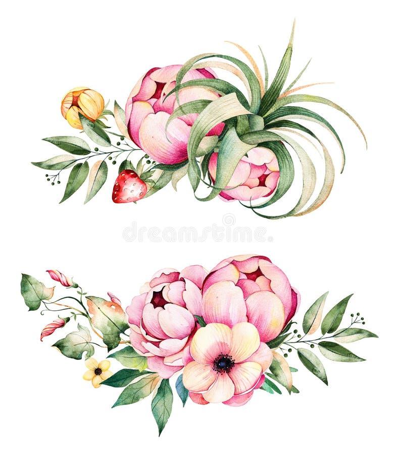 Beira redonda do quadro da aquarela bonita com peônia, trepadeira de campo, ramos, tremoceiro, planta de ar, morango ilustração do vetor