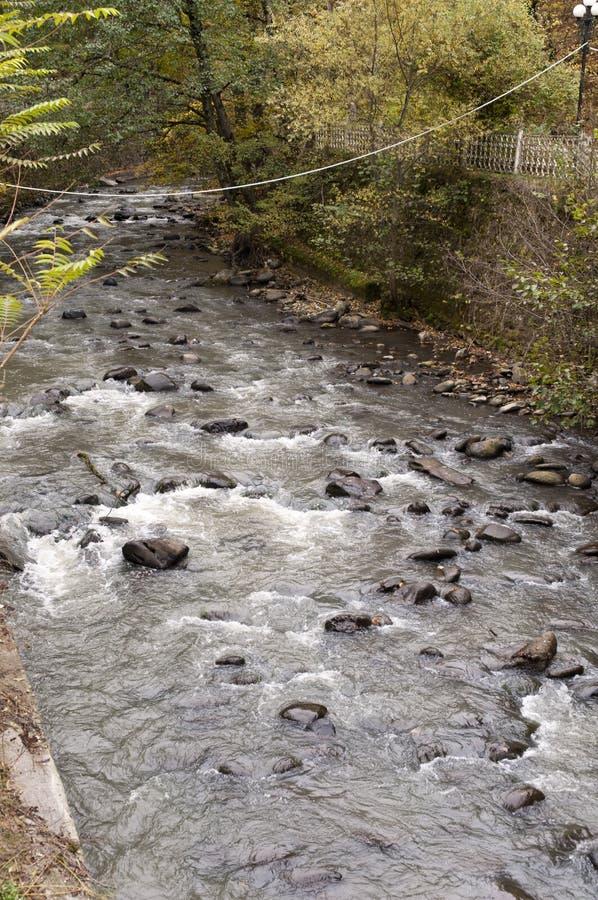 Beira-rio do nascente de água natural de Borjomi do parque em Geórgia imagem de stock