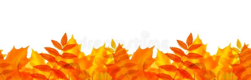 Beira sem emenda com folhas de outono ilustração stock