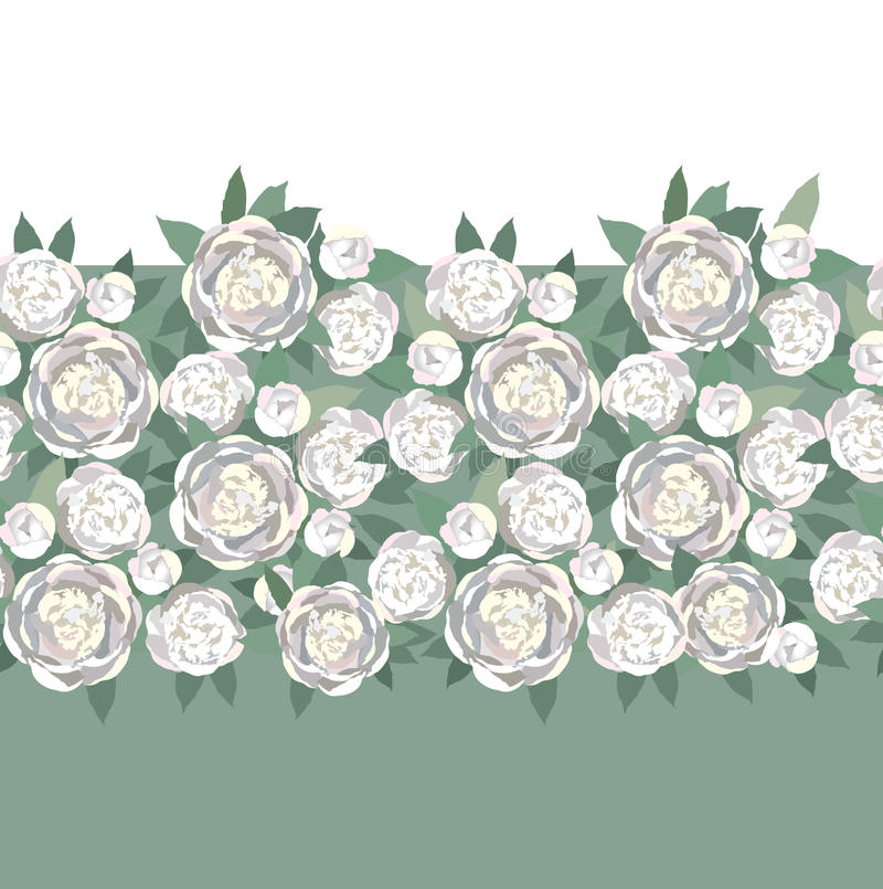 Beira sem emenda da textura com as flores brancas delicadas ilustração stock