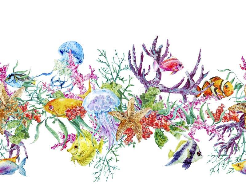 Beira sem emenda da vida marinha da aquarela do vintage do verão imagem de stock