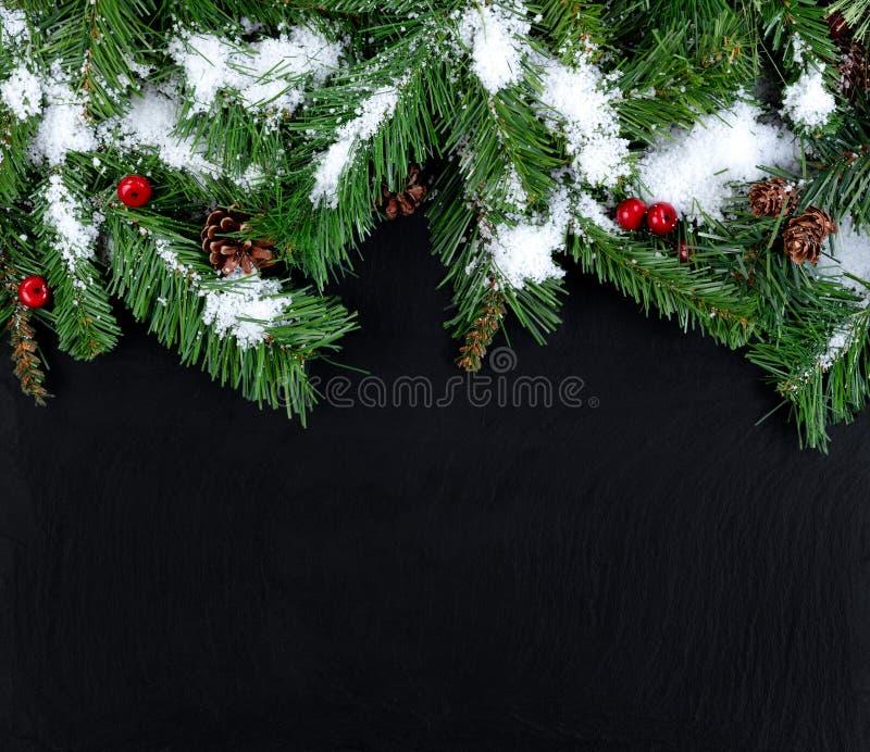 Beira superior de ramos de árvore sempre-verdes nevado no backg de pedra preto foto de stock royalty free