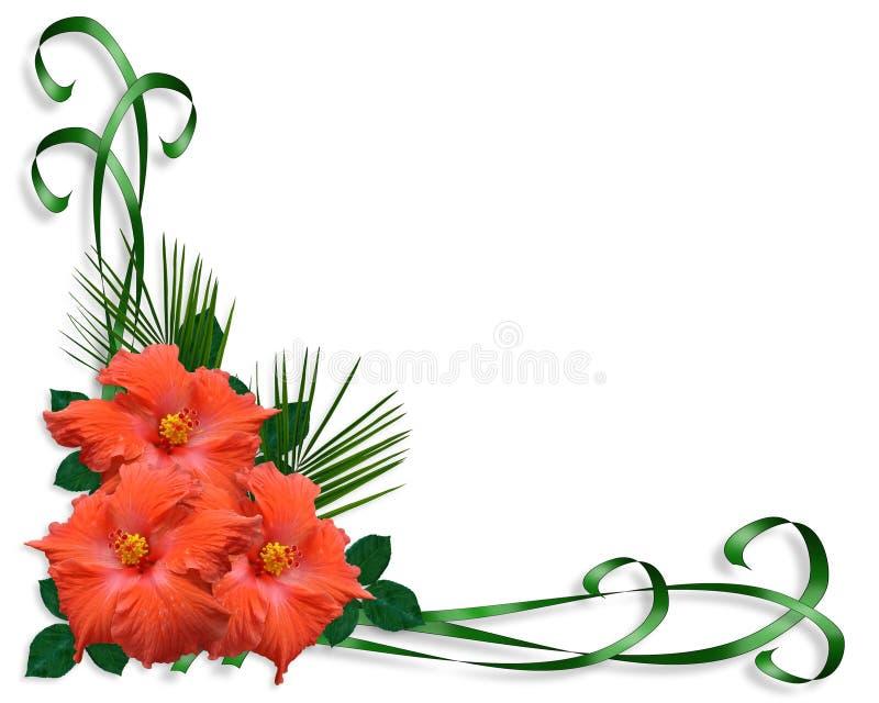 Beira tropical das flores do hibiscus ilustração do vetor